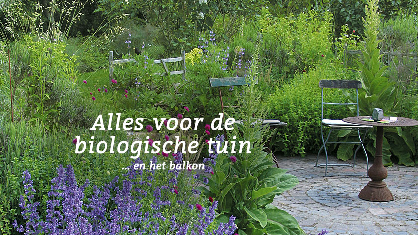ecoshop voor natuurlijke mode en biologische producten waschb r. Black Bedroom Furniture Sets. Home Design Ideas