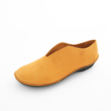 Slipper, curry